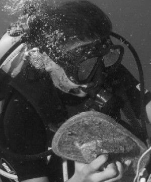 A diver clearing up rubbish underwater