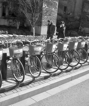A line of rental bicycles parked on the street side.